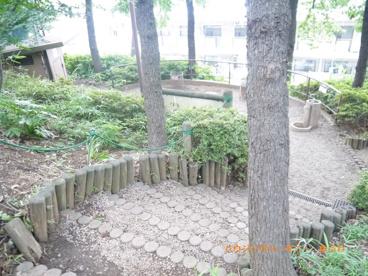 昆虫公園の画像5