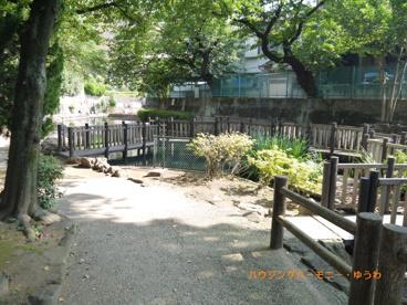 氷川つり堀公園の画像3