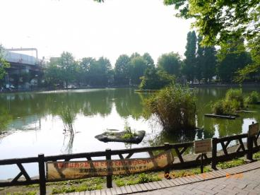 見次公園舟遊場の画像5