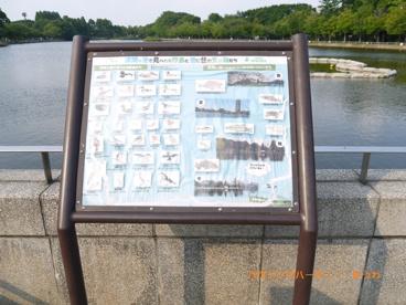 浮間公園の画像2