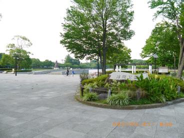 浮間公園の画像5