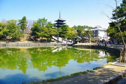 猿沢池の画像1