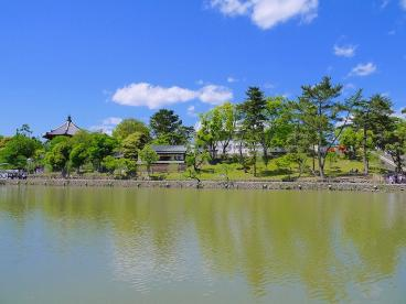 猿沢池の画像2