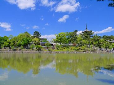 猿沢池の画像4