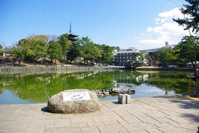 猿沢池の画像5