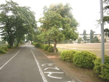 坂戸市立 勝呂小学校の画像2