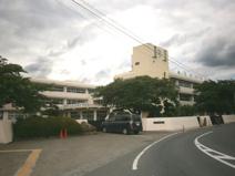 毛呂山町立 泉野小学校