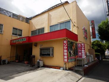 モリヤ動物病院 町田の画像1