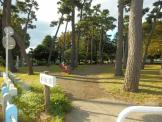 相模台公園