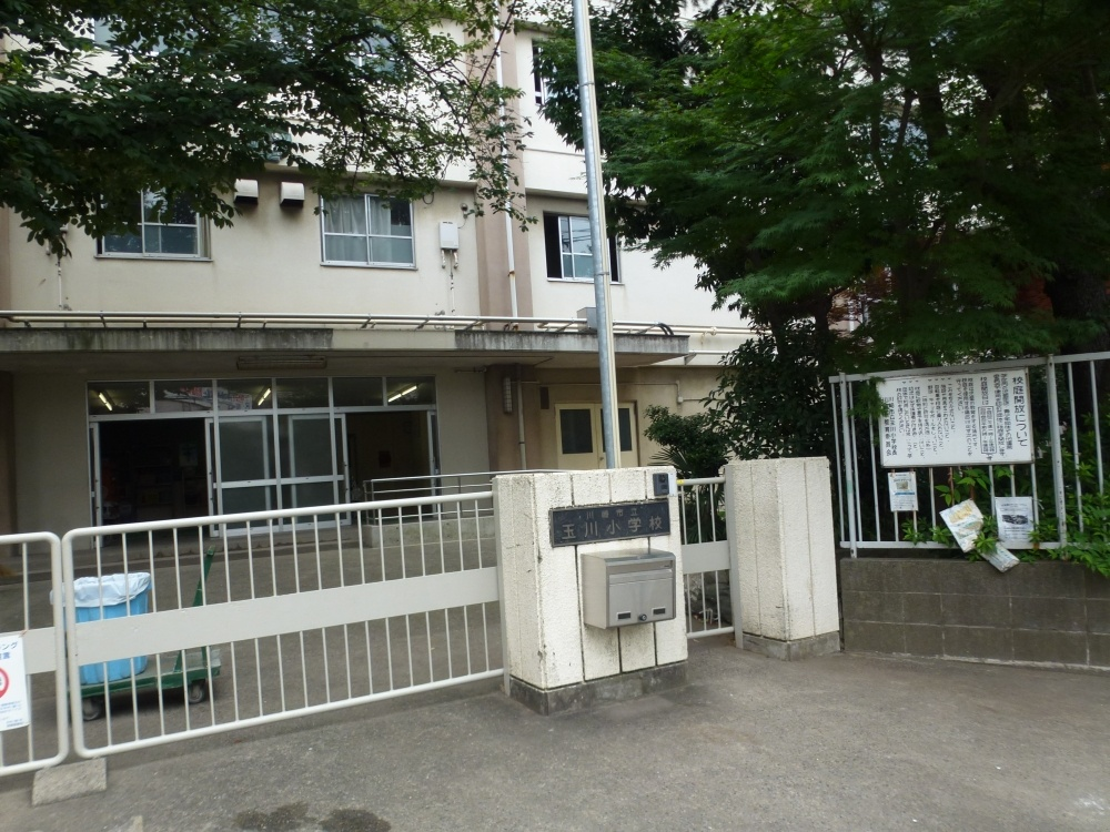 川崎市立玉川小学校の画像