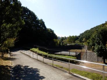 沢谷戸自然公園の画像1