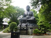 東京大仏(常蓮寺)