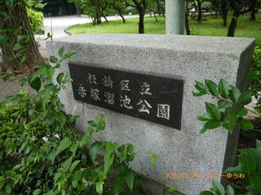 板橋区立 赤塚溜池公園の画像1