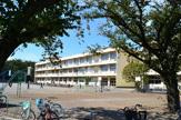 大野台小学校