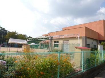 小川幼稚園の画像1