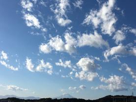 富澤歩の画像3