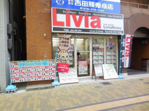株式会社Liviaの画像