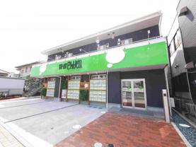 奥田真由美の画像1