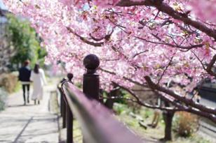 川添亜美の画像3