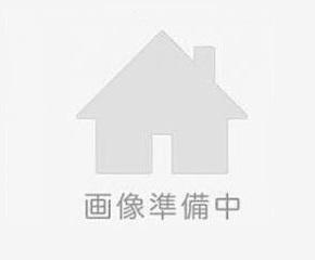 長野沙希【レセプショニスト】の画像